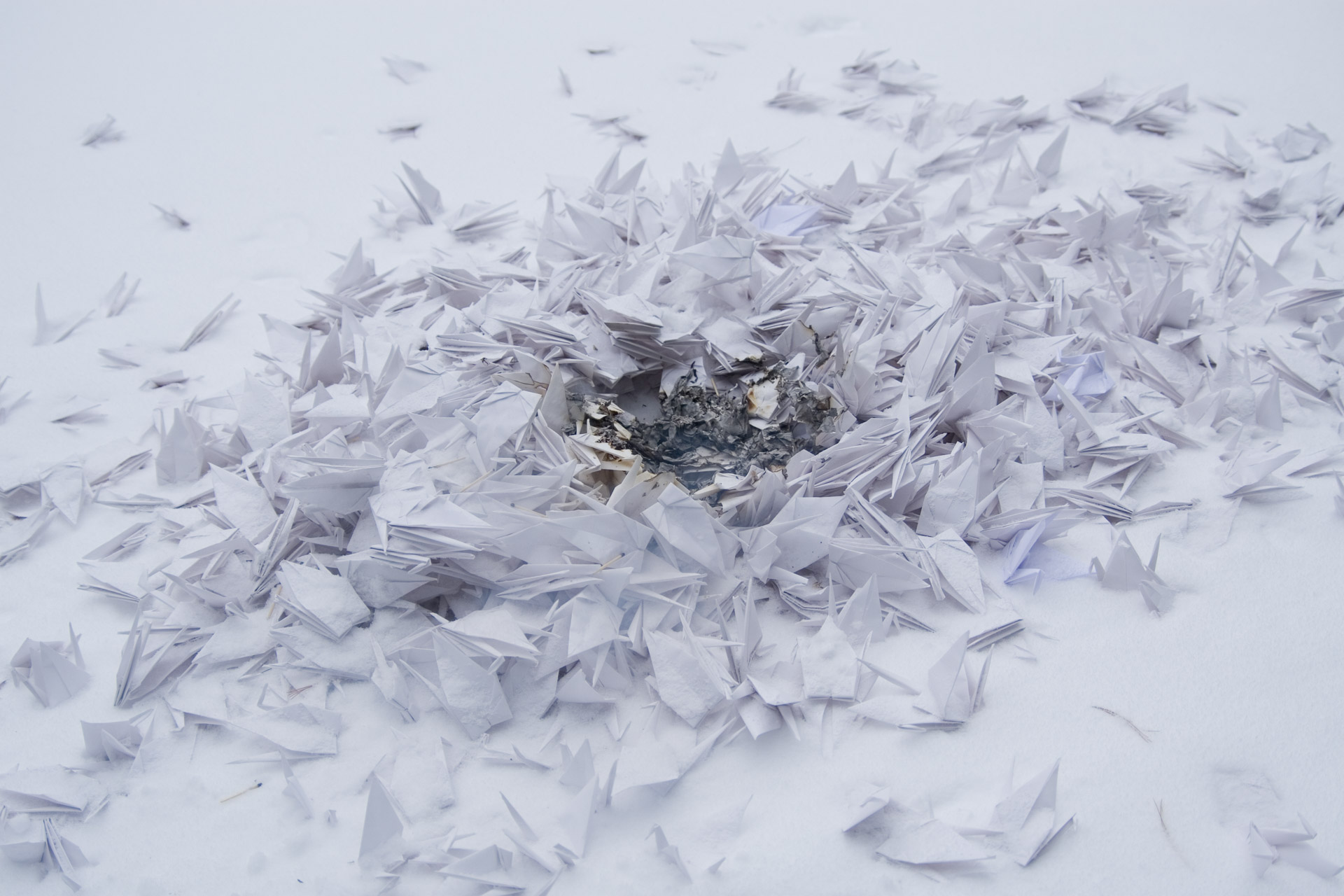 A pile of white paper cranes smoldering in the snow