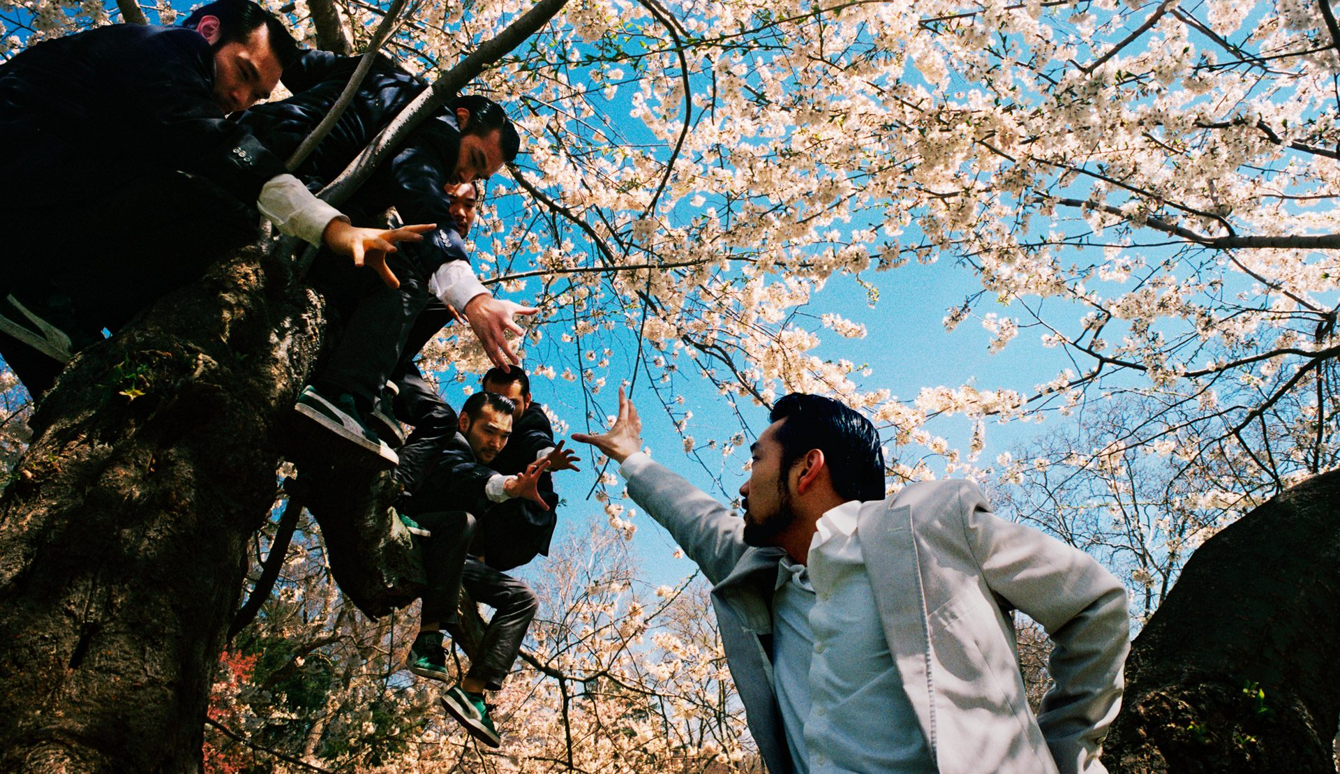 A group of asians in dark suits sitting in a tree, reaching for the same asian in a white suit on the ground.