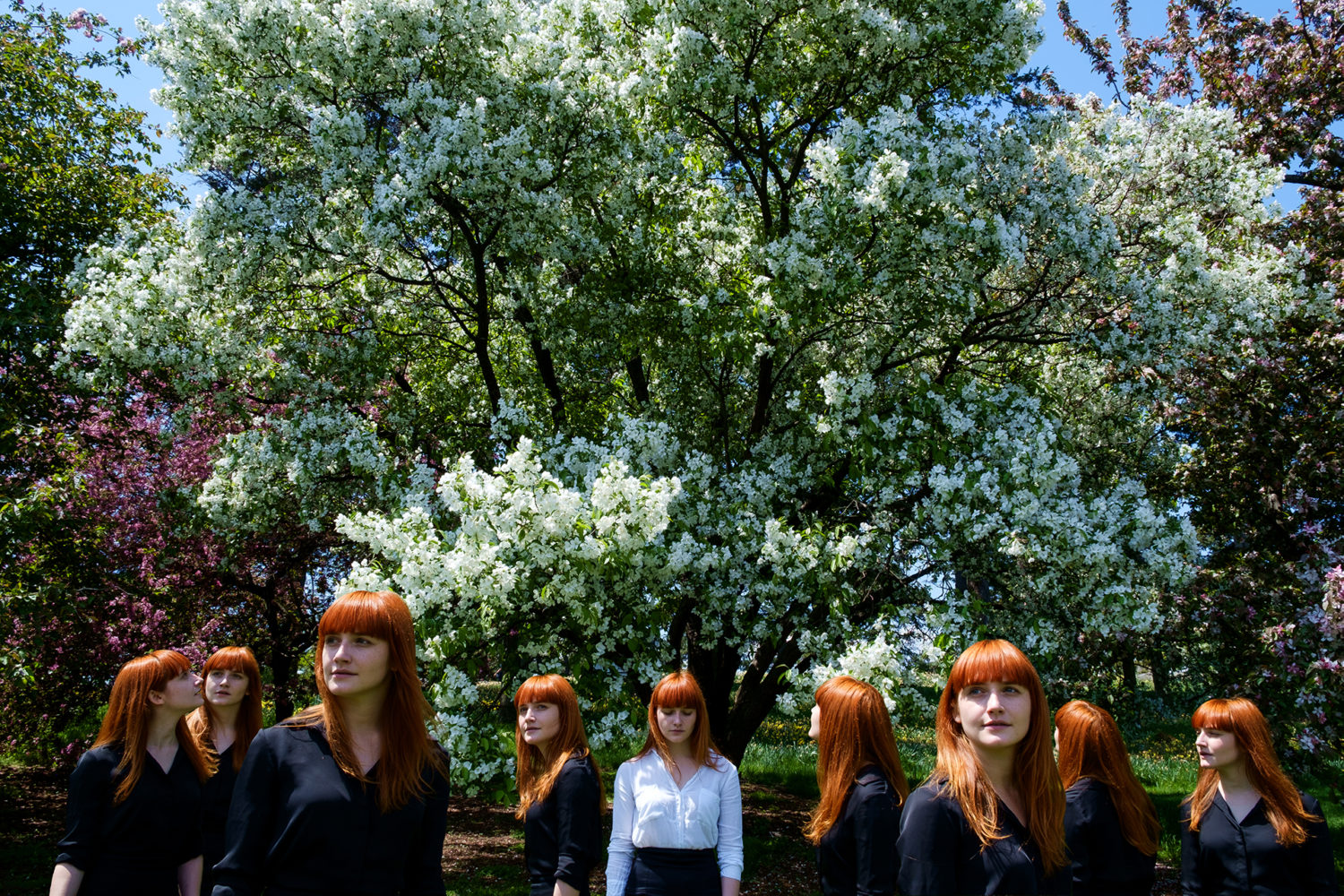 Solitarius - A red haired women standing underneith Cherry Blossoms in white. Same red haired women in black looking around.